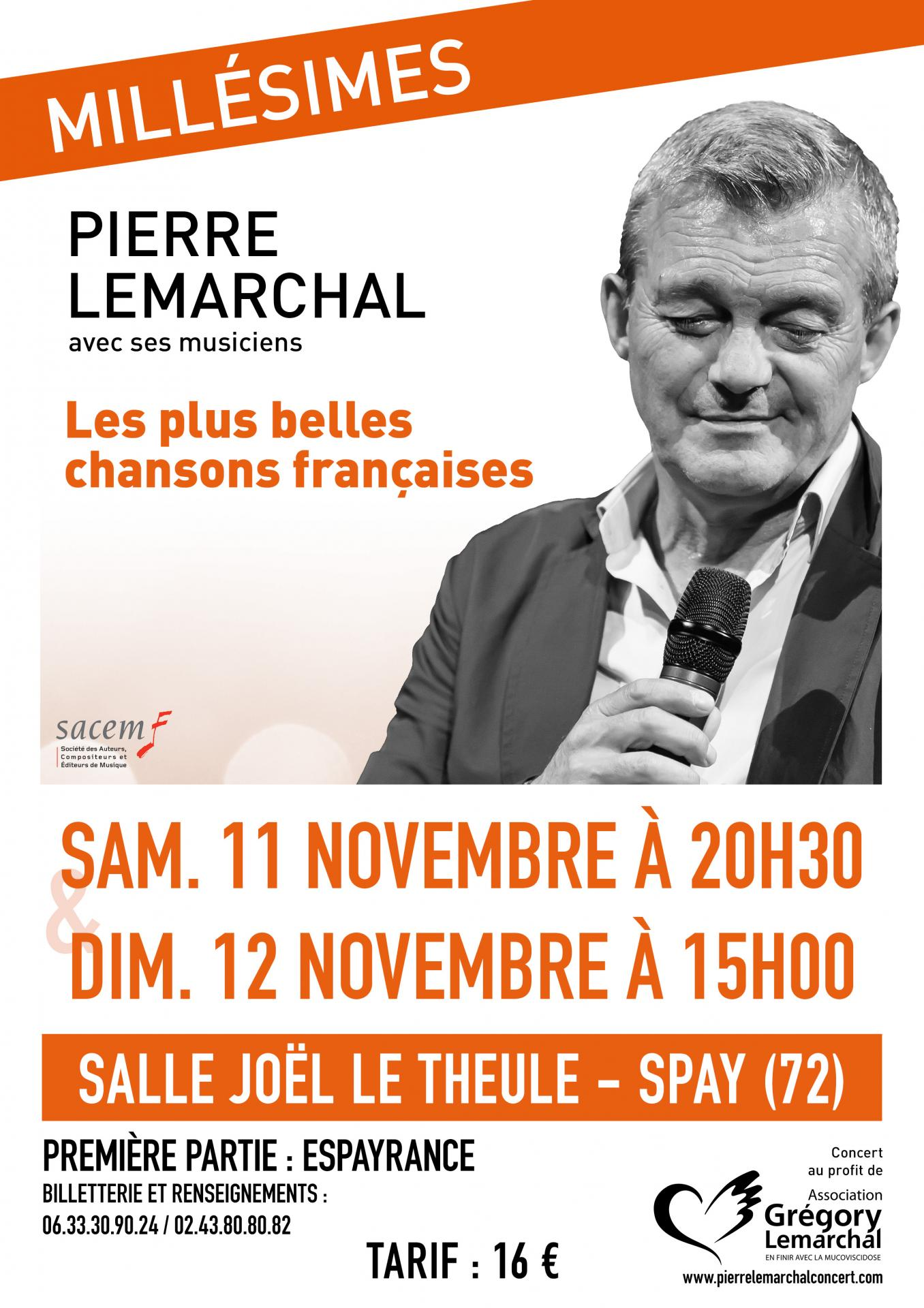 11 11 17 affiche spay